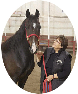 Manitoba Equine Directory - Stables